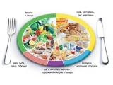 Артиленд - иконка «питание» в Балашихе